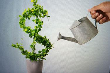 Ставка по вкладам в Сбербанке 2018 год на сегодня - новые цифры
